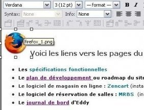 Page de Wikiwig en mode �dition